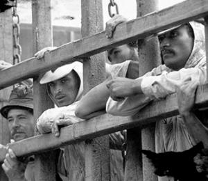 Comissão da CNBB emite nota pelo Dia Nacional de Combate ao Trabalho Escravo