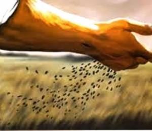Mês vocacional é um convite a semeadura da Boa Nova de Cristo