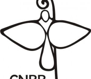 CNBB divulga nota sobre a inclusão da ideologia de gênero nos Planos de Educação