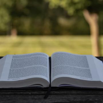 Os 3 motivos bíblicos que fundamentam a comunidade